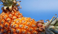 fougasse hawaienne
