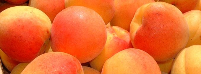 Fougasse abricot amande