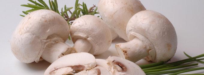 fougasse-champignons-de-paris